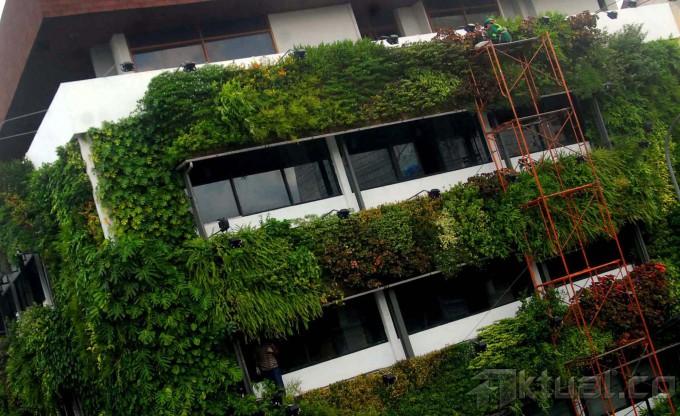 Konsep Go Green Gedung Bertingkat Diperkotaan Terhangat Terpercaya