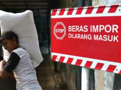 Pemkab Bone Tolak Beras Impor (Aktual/Ilst.Nelson)