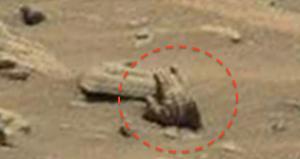 Foto Tangan Manusia Mars 2