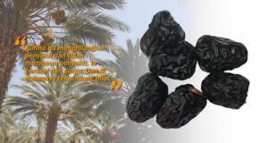 Khasiat buah kurma. (ilustrasi/aktual.com)