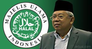 Ketua Umum MUI, Ma'ruf Amin. (ilustrasi/aktual.com)