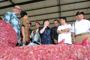 1. Kunjungan Kerja Spesifik Komisi IV DPR RI Ke Brebes
