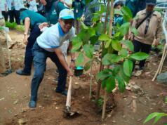 Peduli PLN Menanam 1000 Pohon