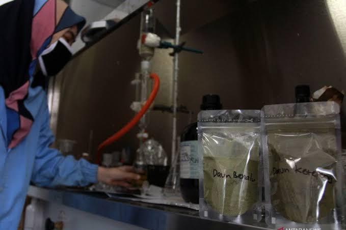 Uji Lab Penemuan Obat Herbal Untuk Penyembuhan COVID-19/Antara