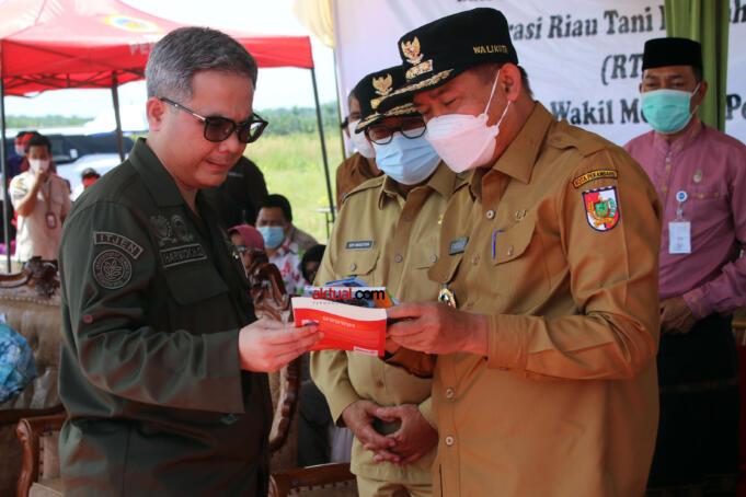 Wakil Menteri Pertanian (Wamentan) Harvick Hasnul Qolbi bersama Walikota Pekanbaru, Firdaus dalam Kegiatan Panen Jagung dan Penerapan Mekanisasi Pertanian yang diselenggarakan Koperasi Riau Tani Berkah Sejahtera (RTBS) di kawasan Agrowisata, Pekanbaru, Riau, Senin (21/6) siang. Foto: Warnoto/Aktual.com