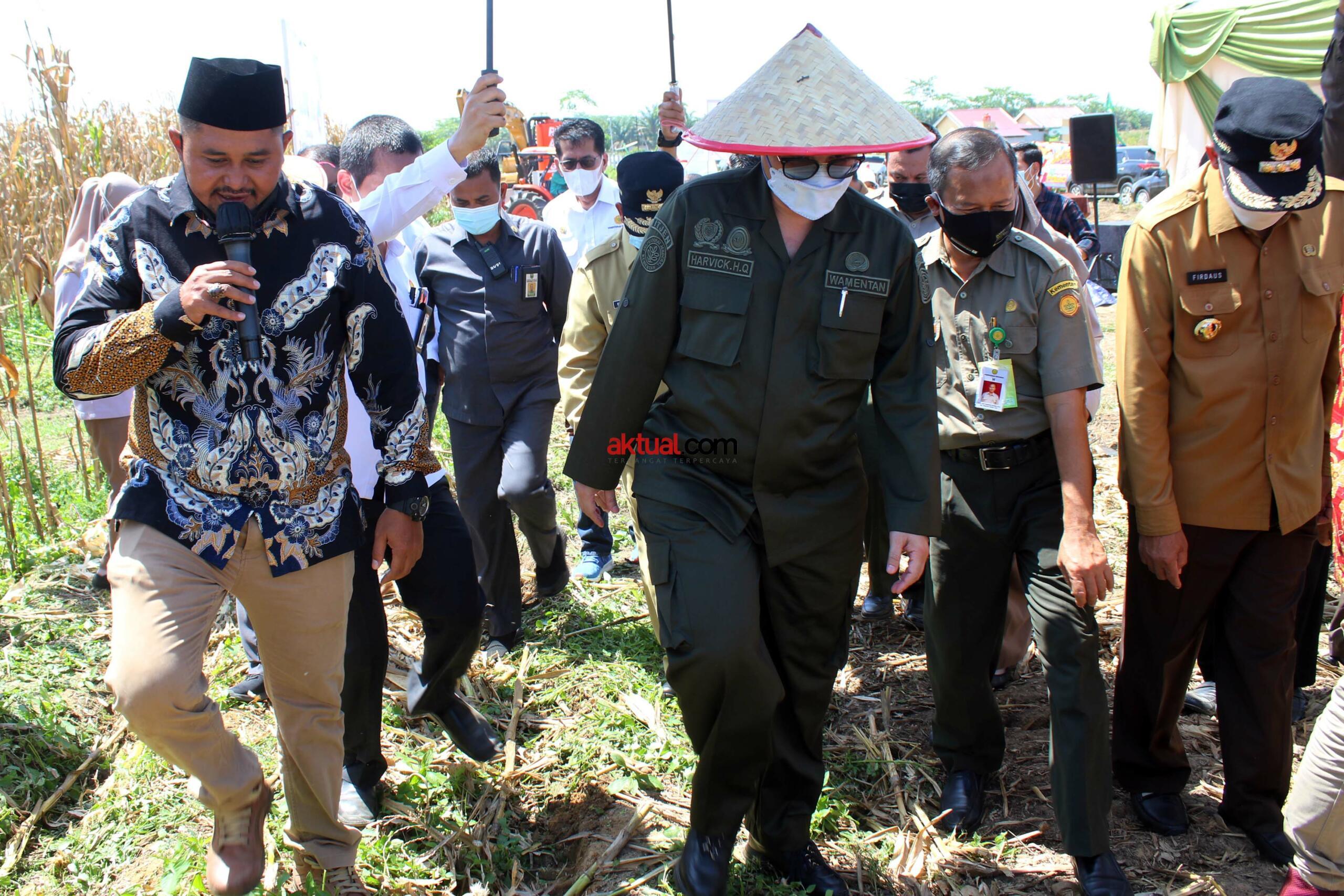 Wakil Menteri Pertanian (Wamentan) Harvick Hasnul Qolbi (kiri) bersama Wakil Gubernur Pekanbaru, Edy Nasution (tengah) serta Walikota Pekanbaru, Firdaus (kanan) usai menyaksikan penerapan mekanisasi alat pertanian Koperasi Tani Berkah Sejahtera (RTBS) di kawasan Agrowisata, Pekanbaru, Riau, Senin (21/6) siang. Foto: Warnoto/Aktual.com