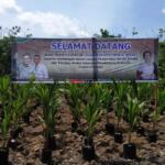 Penyerahan Benih Kelapa dan Polybag Aneka Sayuran (Mendukung Kegiatan Sejuta Polybeg), oleh Wakil Menteri Pertanian RI, Harvick Hasnul Qolbi pada Masyarakat Petani Kubu Raya dalam agenda kunjungan kerja (kunker) di Kalimantan Barat, Selasa (3/8/2021). (Foto: Aktual / Arbie Marwan)